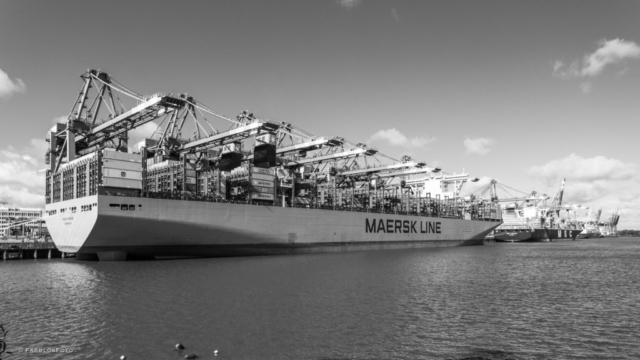 "Die ""Munich Maersk"" in Hamburg am Eurogate"