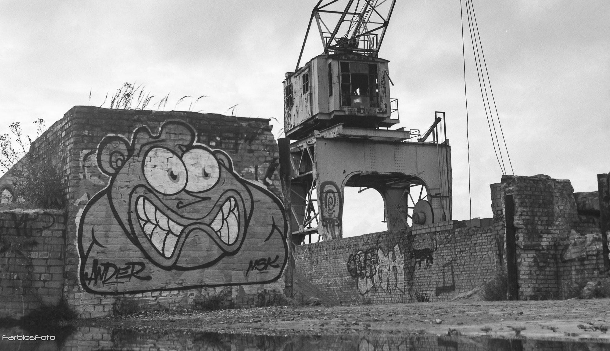 Hafenkran Billhafen analogfotografie