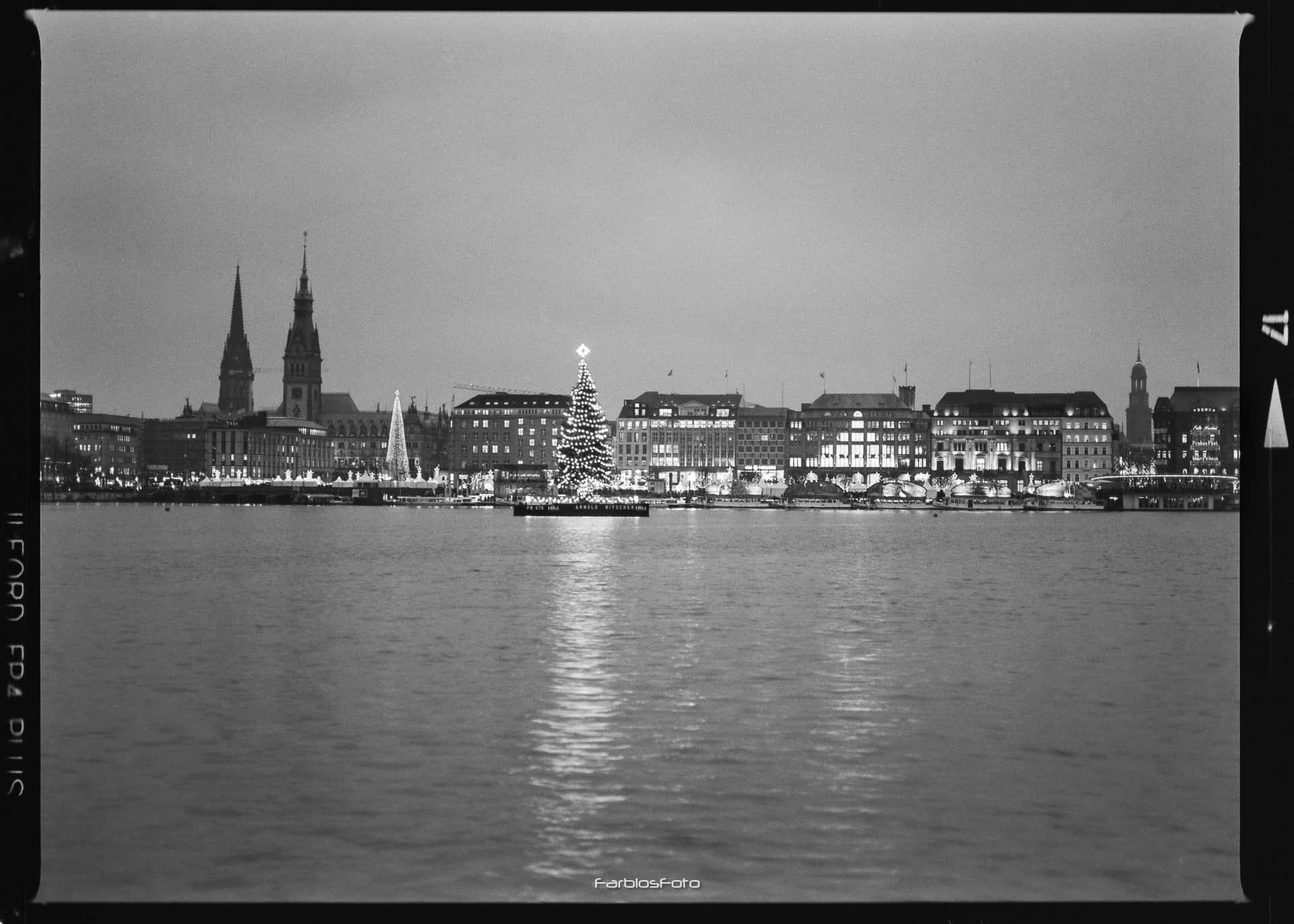 Hamburg Binnenalster   Mamiya M645 1000s   Ilford FP4