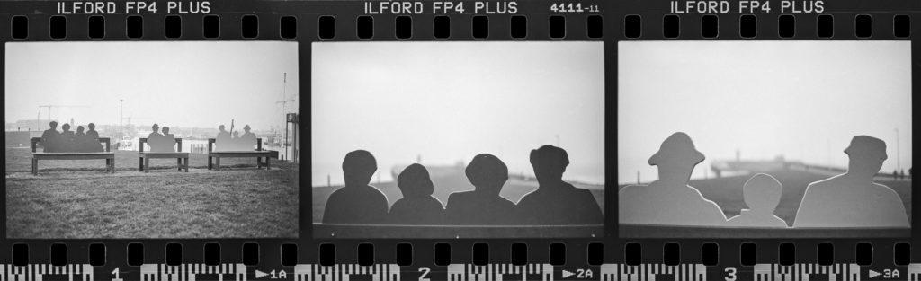 Die ersten 3 Fotos mit der EOS 5 und dem  EF 50mm f/1.8 STM